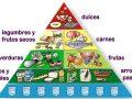¿Por qué el azúcar se ubica en la punta y el agua en la base de la pirámide alimenticia?