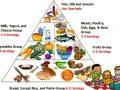 Pirámide alimenticia en inglés