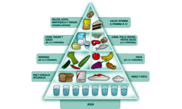 Pirámide alimenticia para adultos