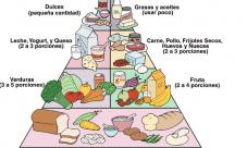 ¿Quién creó la primera pirámide alimenticia?