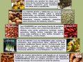 ¿Qué beneficios nos brinda la pirámide alimenticia?