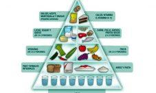 Características de la pirámide alimenticia