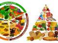 Diferencias entre el plato del buen comer y la pirámide alimenticia