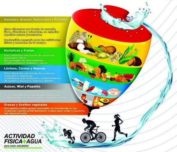 Pirámide alimenticia de Venezuela