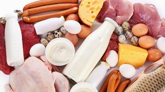 ¿Qué nos aportan los alimentos de origen animal?