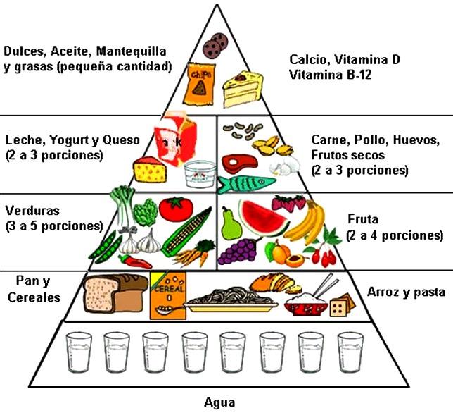Partes de la pirámide alimenticia